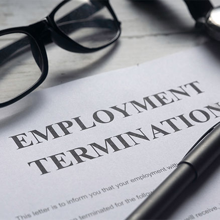 Employment Litigation image